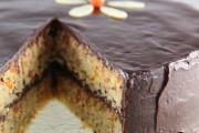 apricot-almond-marzipan-cake