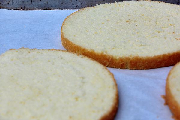 Basic Genoise Cake
