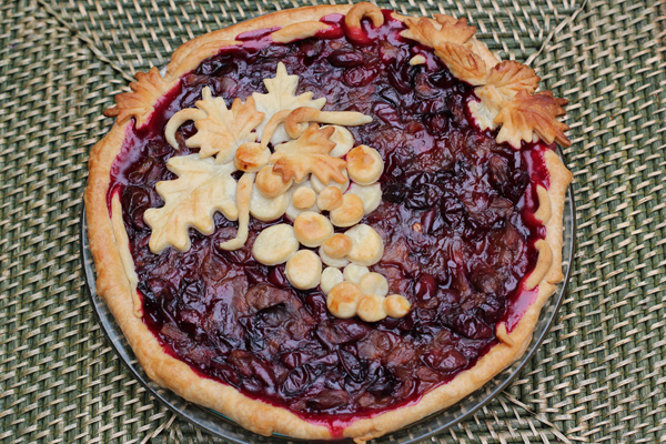 concord-grape-pie