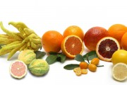 assorted-citrus