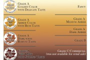 maple-syrup-grading-comparison-chart
