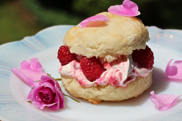 raspberry rose shortcake 2