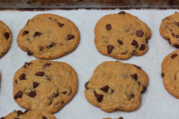 Bob's Red Mill Chocolate Chip Cookies