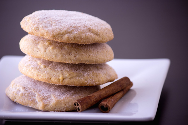 Modern Snickerdoodle A (1)
