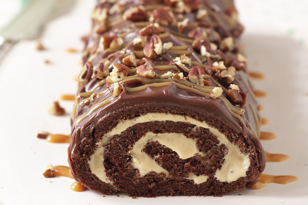 Ice Cream Chocolate Cake Roll Recipe