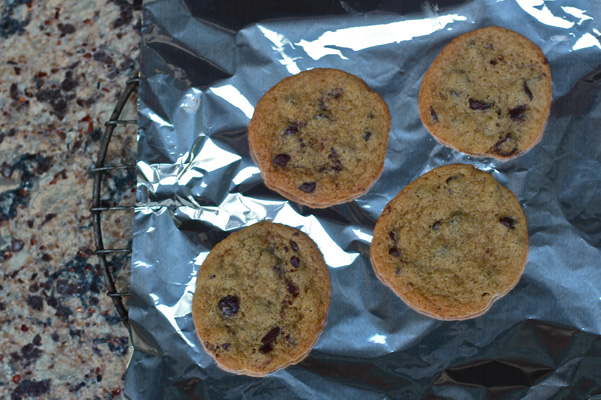 grilled chocolate chip cookies 1