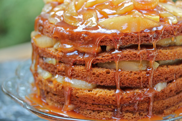Southern Dried Apple Stack Cake