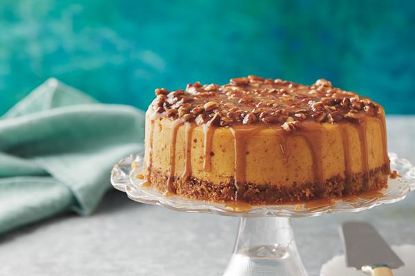 Praline Pumpkin Cheesecake Recipe Bakepedia