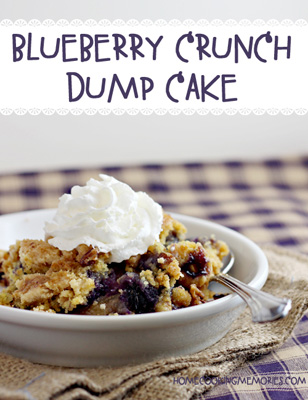 Blueberry-Crunch-Cake-3d