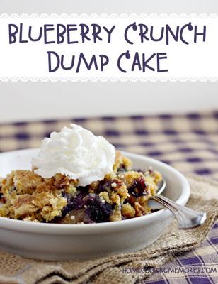 Blueberry-Crunch-Cake-3d